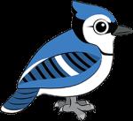 213px bird
